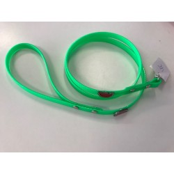 Green Watermelon Leash