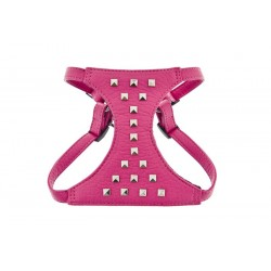Ferribiella Harness Spike Pink