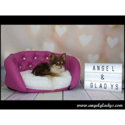 Angel & Gladys Deluxe Pink